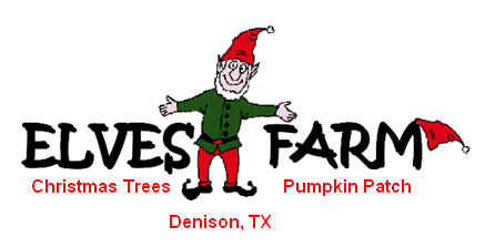 Elves Christmas Tree Farm And Pumpkin Patch One Hour North
